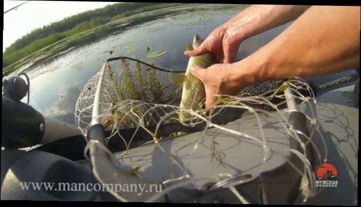 когда рыбачить на поппер
