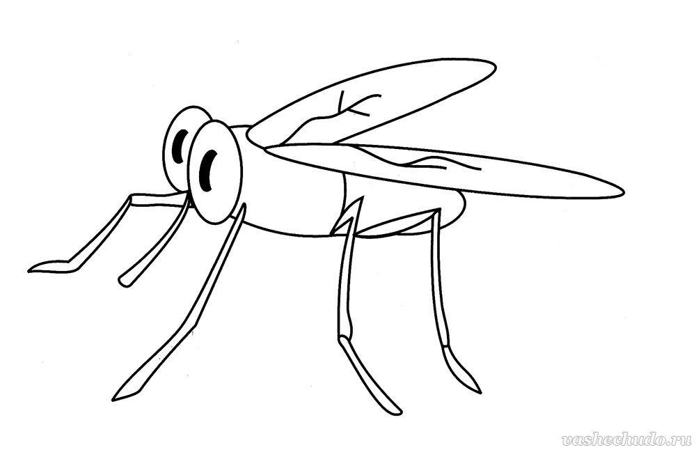 Раскраска комаров